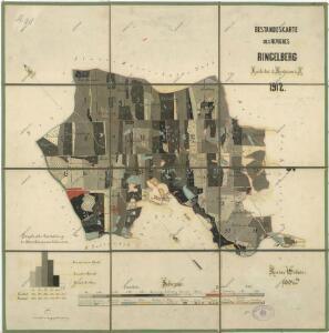 Porostní mapa revíru Horní Výšina