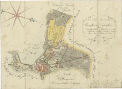 Geometrický plán města Třeboně s předměstím, Novým Dvorem a přilehlými pozemky