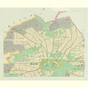 Ober Reith - c2114-2-003 - Kaiserpflichtexemplar der Landkarten des stabilen Katasters