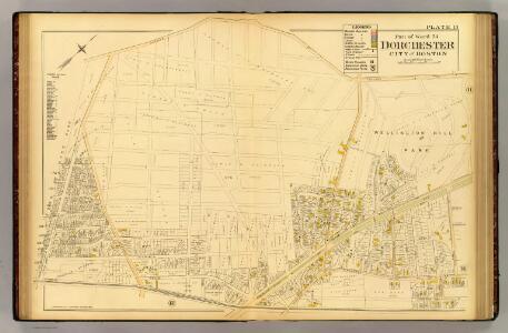 13. Ward 24 Dorchester.