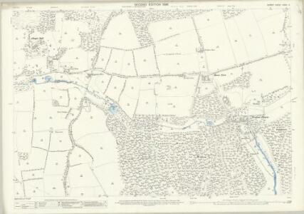 Surrey XXXIII.5 (includes: Abinger; Wotton) - 25 Inch Map