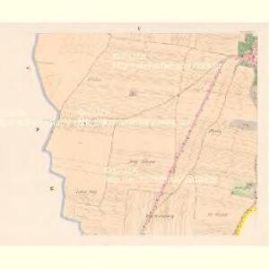 Protiwin - c6141-1-005 - Kaiserpflichtexemplar der Landkarten des stabilen Katasters