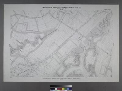 Sheet No. 36. [Includes Chelsea Avenue, Union Avenue, Chelsea Creek, Richmond Turnpike and (Travis) Linoleum Ville.]; Borough of Richmond, Topographical Survey.