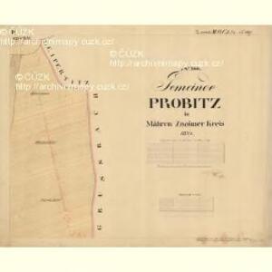 Probitz - m2405-1-002 - Kaiserpflichtexemplar der Landkarten des stabilen Katasters