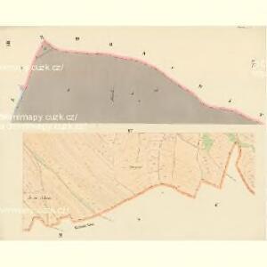 Dobrzan (Dobřany) - c1202-1-010 - Kaiserpflichtexemplar der Landkarten des stabilen Katasters