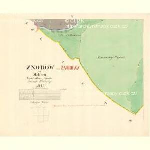 Znorow - m3448-1-005 - Kaiserpflichtexemplar der Landkarten des stabilen Katasters