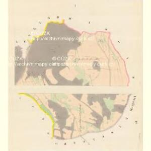 Triebenz (Triebinek) - m0246-1-001 - Kaiserpflichtexemplar der Landkarten des stabilen Katasters