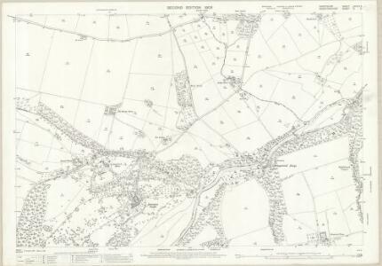 Shropshire LXXVIII.5 (includes: Bromfield; Burrington; Downton; Leintwardine) - 25 Inch Map
