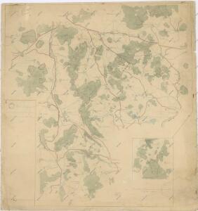 Porostní mapa revíru Týnec