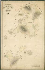 Hospodářská přehledná mapa  revíru Liščí