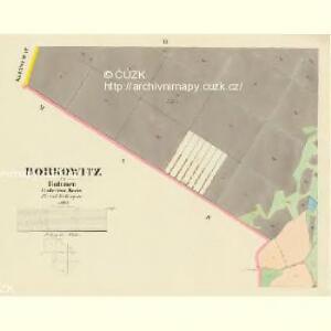 Borkowitz - c0380-1-002 - Kaiserpflichtexemplar der Landkarten des stabilen Katasters