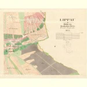 Lippau - m1572-1-006 - Kaiserpflichtexemplar der Landkarten des stabilen Katasters