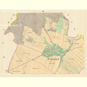 Pissendorf (Prokowa) - m2291-1-002 - Kaiserpflichtexemplar der Landkarten des stabilen Katasters
