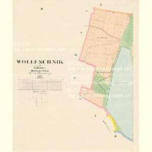 Wolleschnik - c5451-1-002 - Kaiserpflichtexemplar der Landkarten des stabilen Katasters