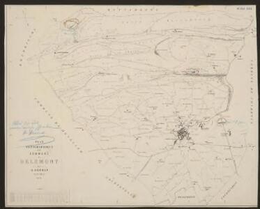 Plan topographique de la commune de Delémont