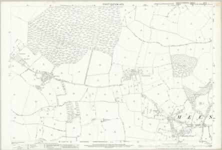 Hertfordshire IX.11 (includes: Anstey; Langley; Meesden; Nuthampstead) - 25 Inch Map