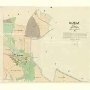 Brzezy - c0567-1-003 - Kaiserpflichtexemplar der Landkarten des stabilen Katasters